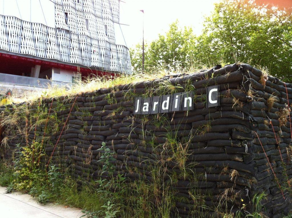 jardin c 3 1024x765 - Le jardin C