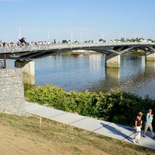 pont leopold sedar senghor 1 315x315 - Pont Léopold Sédar Senghor