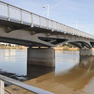 pont leopold sedar senghor 4 315x315 - Pont Léopold Sédar Senghor