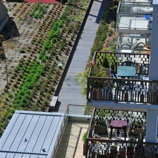 S19 04.12 JAC.47 315x315 - Le jardin des Fonderies (logements)